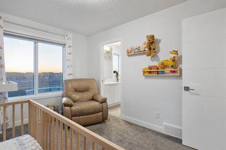 Photo 14: 131 Cornerstone Crescent NE in Calgary: Cornerstone Detached for sale : MLS®# A1089440