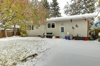 Photo 19: 8 Lenton Place SW in Calgary: North Glenmore Park Detached for sale : MLS®# A1070679