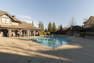 """Photo 17: 82 15152 62A Avenue in Surrey: Sullivan Station Townhouse for sale in """"Uplands"""" : MLS®# R2247833"""