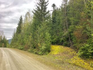 Photo 38: 3,4,6 Armstrong Road in Eagle Bay: Vacant Land for sale : MLS®# 10133907