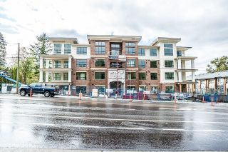 "Main Photo: 310 12367 224 Street in Maple Ridge: West Central Condo for sale in ""FALCON HOUSE"" : MLS® # R2207803"