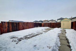 Photo 43: 208 Taradale Drive NE in Calgary: Taradale Detached for sale : MLS®# A1067291