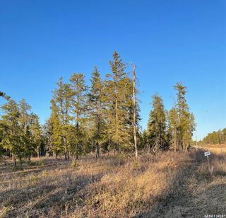 Photo 6: Over 1 acre lots in Hudson Bay: Lot/Land for sale : MLS®# SK850482