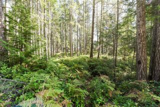 Photo 10: Lot 191 Brent Rd in : CV Comox Peninsula Land for sale (Comox Valley)  : MLS®# 855702