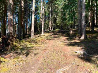 Photo 15: 413 CAMPBELL BAY Road: Mayne Island Land for sale (Islands-Van. & Gulf)  : MLS®# R2564883