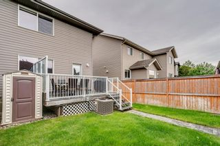 Photo 45: 217 CHAPARRAL VALLEY Drive SE in Calgary: Chaparral Semi Detached for sale : MLS®# A1119212