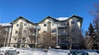 Photo 5: 404 21 Dover Point SE in Calgary: Dover Apartment for sale : MLS®# A1068387