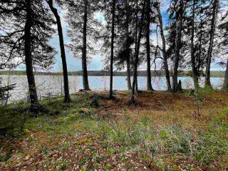 Photo 9: LOT 1 COTTAGE Road in Prince George: Blackwater Land for sale (PG Rural West (Zone 77))  : MLS®# R2582686