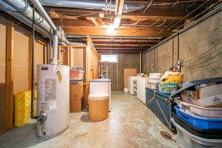 Photo 34:  in Edmonton: Zone 22 House for sale : MLS®# E4232295