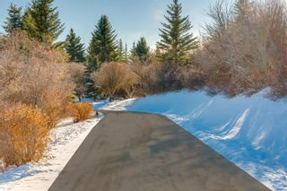 Photo 10: 3 Wolfwillow Lane in Rural Rocky View County: Rural Rocky View MD Detached for sale : MLS®# A1049890
