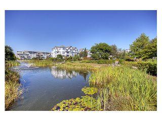 """Photo 9: 228 12633 NO 2 Road in Richmond: Steveston South Condo for sale in """"NAUTICA NORTH"""" : MLS®# V845784"""