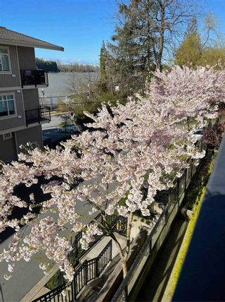 Photo 33: 210 11580 223 STREET in Maple Ridge: West Central Condo for sale : MLS®# R2511216