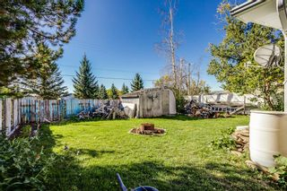 Photo 11: 237 Brentwood Drive: Strathmore Detached for sale : MLS®# A1148634
