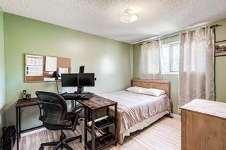 Photo 24: 459 Queen Charlotte Road SE in Calgary: Queensland Detached for sale : MLS®# A1122590