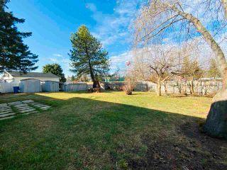 Photo 18: 127 Green Ash Drive: Wetaskiwin House for sale : MLS®# E4241791
