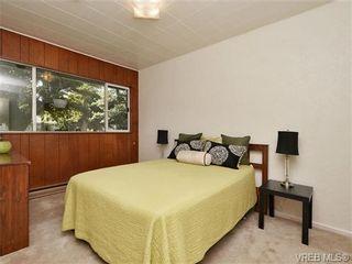 Photo 6: 2636 Victor St in VICTORIA: Vi Oaklands House for sale (Victoria)  : MLS®# 702369