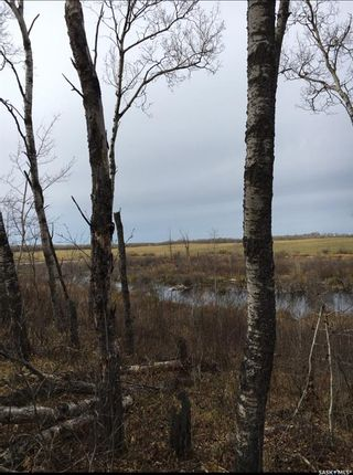 Photo 6: Acreage-Adjacent to South Bay-Turtle Lake in Turtle Lake: Lot/Land for sale : MLS®# SK858441