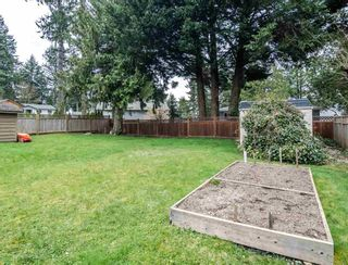 Photo 33: 1654 OUGHTON Drive in Port Coquitlam: Mary Hill House for sale : MLS®# R2571454