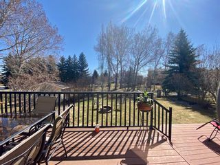 Photo 17: 160 Mt Robson Circle SE in Calgary: McKenzie Lake Detached for sale : MLS®# A1099361