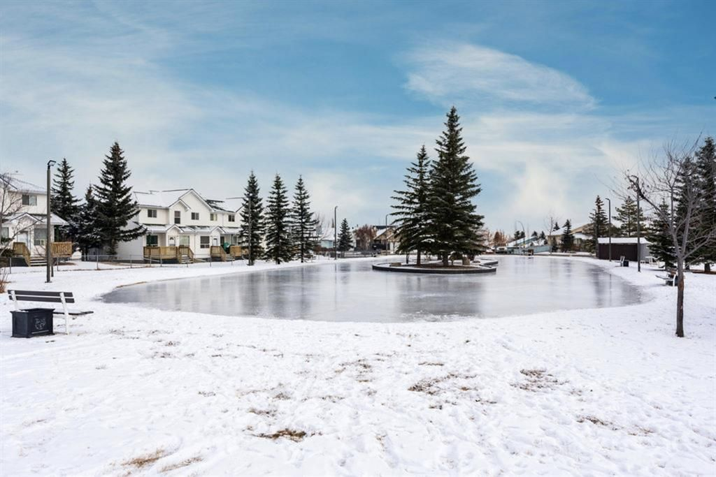 Amazing location with a skating rink (almost) in your backyard!
