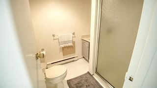 Photo 23: 2118 18 Street SW in Calgary: Bankview Detached for sale : MLS®# A1122374