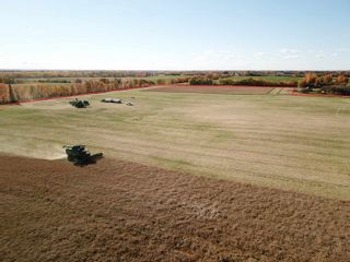 Photo 5: 50507 Rge Road 275: Rural Parkland County Rural Land/Vacant Lot for sale : MLS®# E4265081