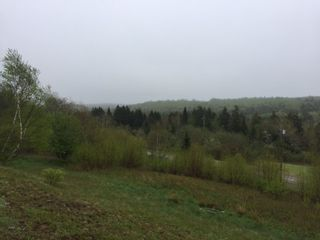 Photo 5: 101 South Branch Road in New Salem: 102S-South Of Hwy 104, Parrsboro and area Vacant Land for sale (Northern Region)  : MLS®# 202009090