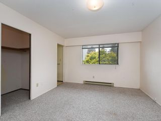 Photo 7: 4174 Glanford Ave in Saanich: SW Glanford House for sale (Saanich West)  : MLS®# 843773