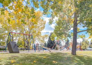 Photo 49: 6207 84 Street NW in Calgary: Silver Springs Detached for sale : MLS®# A1147522