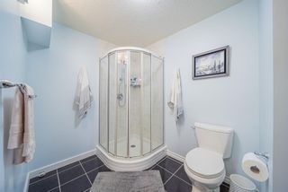 Photo 33: 3319 28 Street SE in Calgary: Dover Semi Detached for sale : MLS®# A1153645