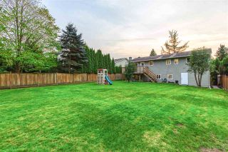 Photo 4: 4972 197A Street in Langley: Langley City House for sale : MLS®# R2500021