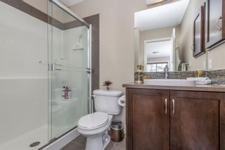 Photo 23: 59 Evansview Gardens NW in Calgary: Evanston Residential for sale : MLS®# A1071112