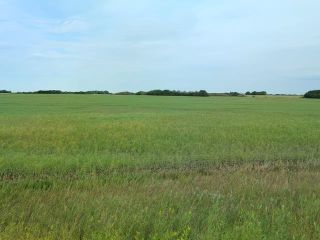 Photo 3: : Rural Beaver County Rural Land/Vacant Lot for sale : MLS®# E4239437