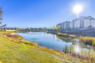 Photo 16: 8309 304 Mackenzie Way SW: Airdrie Apartment for sale : MLS®# A1153987