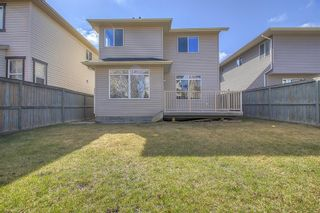 Photo 45: 303 Chapalina Terrace SE in Calgary: Chaparral Detached for sale : MLS®# A1079519