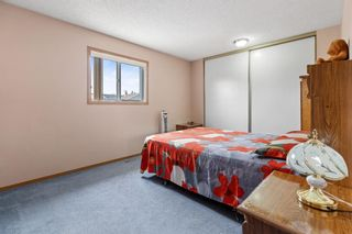 Photo 13: 249 martindale Boulevard NE in Calgary: Martindale Detached for sale : MLS®# A1116896