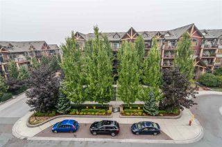 """Photo 25: 523 8288 207A Street in Langley: Willoughby Heights Condo for sale in """"Yorkson Creek Walnut Ridge 2"""" : MLS®# R2546058"""