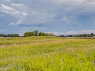 Photo 11: 14ac NORTH of DUNBOW Rd 48 Street: Rural Foothills County Residential Land for sale : MLS®# A1092764