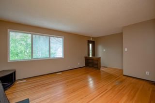 Photo 15: 141 40th Avenue SW in Calgary: Parkhill Detached for sale : MLS®# A1107597