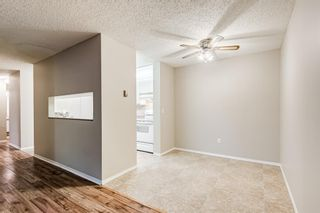 Photo 9: 103 11 Dover Point SE in Calgary: Dover Apartment for sale : MLS®# A1144552
