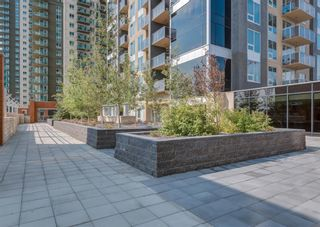 Photo 29: 1703 211 13 Avenue SE in Calgary: Beltline Apartment for sale : MLS®# A1147857