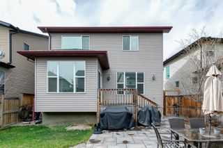 Photo 39: 31 BRIGHTONCREST Common SE in Calgary: New Brighton Detached for sale : MLS®# A1102901