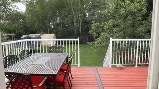 Photo 33: 4815 52 Avenue: Thorsby House for sale : MLS®# E4258238