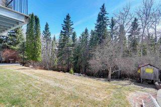 Photo 45: 48 MARLBORO Road in Edmonton: Zone 16 House for sale : MLS®# E4239727
