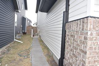 Photo 25: 85 Saddlehorn Close NE in Calgary: Saddle Ridge Detached for sale : MLS®# A1096227