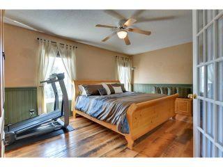 Photo 20: 83 MT SELKIRK Close SE in Calgary: McKenzie Lake House for sale : MLS®# C4066159