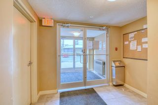 Photo 34: 316 20 Kincora Glen Park NW in Calgary: Kincora Apartment for sale : MLS®# A1144974