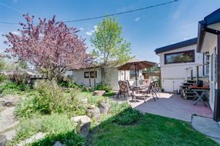 Photo 28: 8008 33 Avenue NW in Calgary: Bowness Detached for sale : MLS®# A1128426