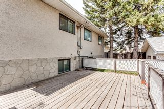 Photo 33: 2510 26 Street SE in Calgary: Southview Detached for sale : MLS®# A1105105