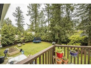 """Photo 27: 3885 203B Street in Langley: Brookswood Langley House for sale in """"Subdivision"""" : MLS®# R2573923"""